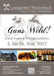 Gans Wild 2017